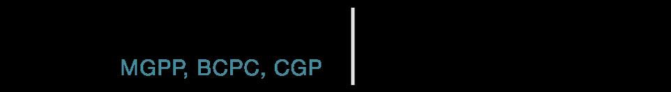 Deborah Reeves MGPP, BCPC, CGP
